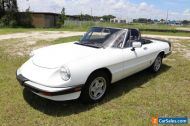 1984 Alfa Romeo Spider Veloce Convertible Must See 80+ HD Pictures